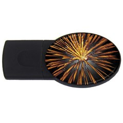 Pyrotechnics Thirty Eight Usb Flash Drive Oval (4 Gb) by Nexatart