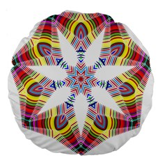 Colorful Chromatic Psychedelic Large 18  Premium Flano Round Cushions by Nexatart