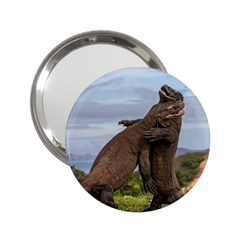 Komodo Dragons Fight 2 25  Handbag Mirrors