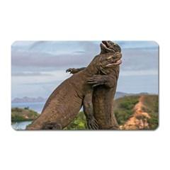Komodo Dragons Fight Magnet (rectangular)
