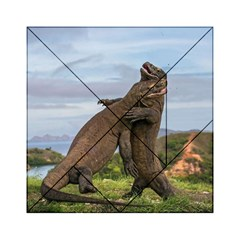 Komodo Dragons Fight Acrylic Tangram Puzzle (6  X 6 )