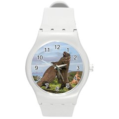 Komodo Dragons Fight Round Plastic Sport Watch (m) by Nexatart