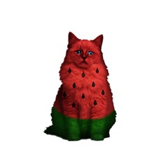 Watermelon Cat 5 5  X 8 5  Notebooks by Valentinaart