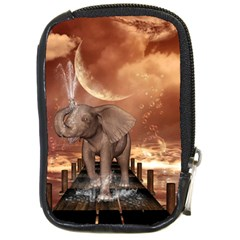 Cute Baby Elephant On A Jetty Compact Camera Cases by FantasyWorld7