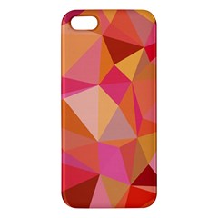 Mosaic Pattern 3 Apple Iphone 5 Premium Hardshell Case by tarastyle