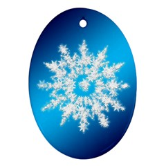 Background Christmas Star Oval Ornament (two Sides)