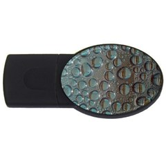 Drop Of Water Condensation Fractal Usb Flash Drive Oval (4 Gb)