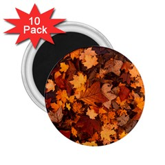 Fall Foliage Autumn Leaves October 2 25  Magnets (10 Pack)  by Nexatart