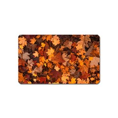Fall Foliage Autumn Leaves October Magnet (name Card) by Nexatart