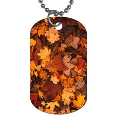 Fall Foliage Autumn Leaves October Dog Tag (two Sides) by Nexatart