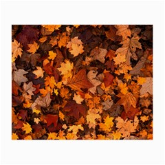 Fall Foliage Autumn Leaves October Small Glasses Cloth by Nexatart