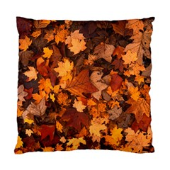 Fall Foliage Autumn Leaves October Standard Cushion Case (two Sides) by Nexatart