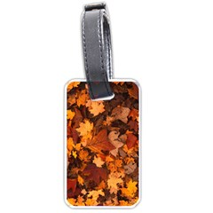 Fall Foliage Autumn Leaves October Luggage Tags (one Side)  by Nexatart