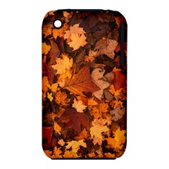 Fall Foliage Autumn Leaves October Iphone 3s/3gs by Nexatart