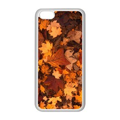 Fall Foliage Autumn Leaves October Apple Iphone 5c Seamless Case (white) by Nexatart