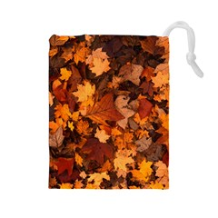 Fall Foliage Autumn Leaves October Drawstring Pouches (large)  by Nexatart