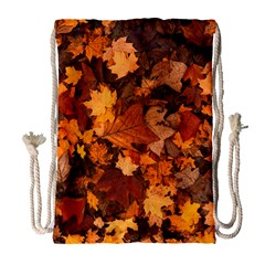Fall Foliage Autumn Leaves October Drawstring Bag (large)