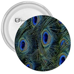 Peacock Feathers Blue Bird Nature 3  Buttons