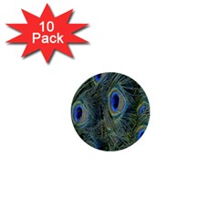 Peacock Feathers Blue Bird Nature 1  Mini Buttons (10 Pack)