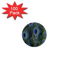 Peacock Feathers Blue Bird Nature 1  Mini Magnets (100 Pack)