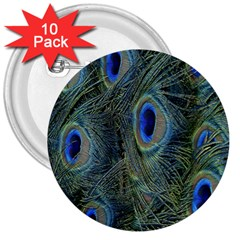 Peacock Feathers Blue Bird Nature 3  Buttons (10 Pack)  by Nexatart