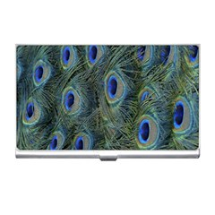 Peacock Feathers Blue Bird Nature Business Card Holders by Nexatart
