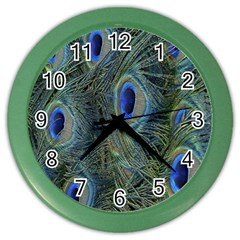 Peacock Feathers Blue Bird Nature Color Wall Clocks