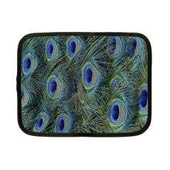 Peacock Feathers Blue Bird Nature Netbook Case (small)