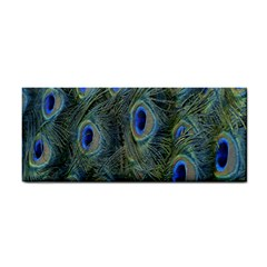 Peacock Feathers Blue Bird Nature Cosmetic Storage Cases