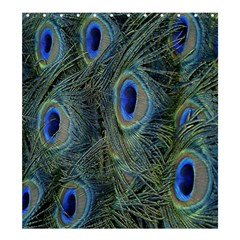 Peacock Feathers Blue Bird Nature Shower Curtain 66  X 72  (large)