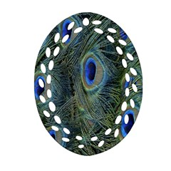 Peacock Feathers Blue Bird Nature Oval Filigree Ornament (two Sides) by Nexatart