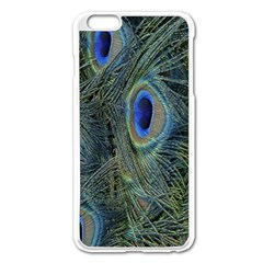 Peacock Feathers Blue Bird Nature Apple Iphone 6 Plus/6s Plus Enamel White Case by Nexatart