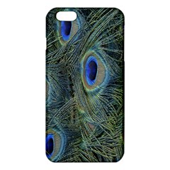 Peacock Feathers Blue Bird Nature Iphone 6 Plus/6s Plus Tpu Case by Nexatart
