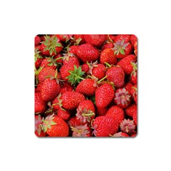 Strawberries Berries Fruit Square Magnet