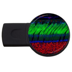 Cells Rainbow Usb Flash Drive Round (2 Gb) by Mariart