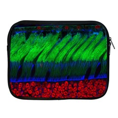 Cells Rainbow Apple Ipad 2/3/4 Zipper Cases by Mariart