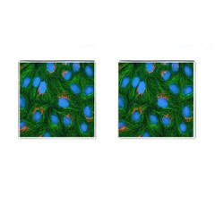 Fluorescence Microscopy Green Blue Cufflinks (square) by Mariart
