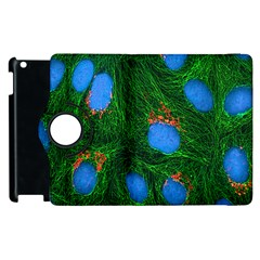 Fluorescence Microscopy Green Blue Apple Ipad 2 Flip 360 Case by Mariart