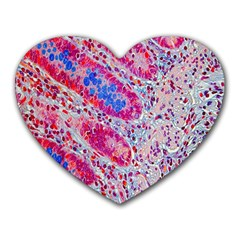 Histology Inc Histo Logistics Incorporated Alcian Blue Heart Mousepads by Mariart