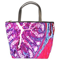 Histology Inc Histo Logistics Incorporated Masson s Trichrome Three Colour Staining Bucket Bags by Mariart