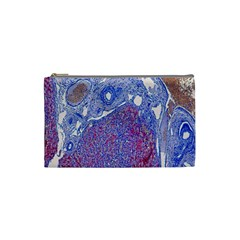 Histology Inc Histo Logistics Incorporated Human Liver Rhodanine Stain Copper Cosmetic Bag (small)  by Mariart