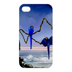 Wonderful Blue  Parrot Looking To The Ocean Apple Iphone 4/4s Premium Hardshell Case by FantasyWorld7