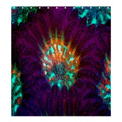 Live Green Brain Goniastrea Underwater Corals Consist Small Shower Curtain 66  X 72  (large)  by Mariart