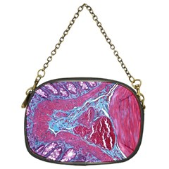 Natural Stone Red Blue Space Explore Medical Illustration Alternative Chain Purses (one Side)  by Mariart