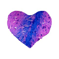 The Luxol Fast Blue Myelin Stain Standard 16  Premium Flano Heart Shape Cushions by Mariart