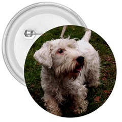 Sealyham Terrier Full 3  Buttons by TailWags