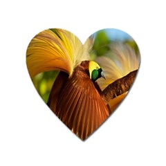 Birds Paradise Cendrawasih Heart Magnet by Mariart