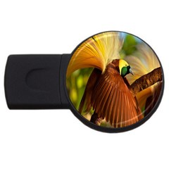 Birds Paradise Cendrawasih Usb Flash Drive Round (4 Gb) by Mariart