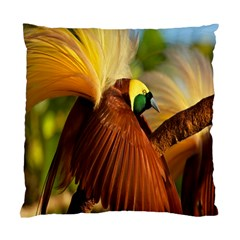Birds Paradise Cendrawasih Standard Cushion Case (two Sides) by Mariart