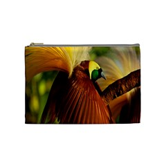 Birds Paradise Cendrawasih Cosmetic Bag (medium)  by Mariart